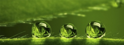 esferas_verdes