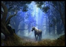 mago-y-unicornio
