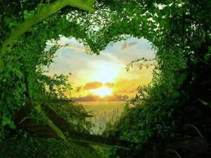 corazón-de-luz